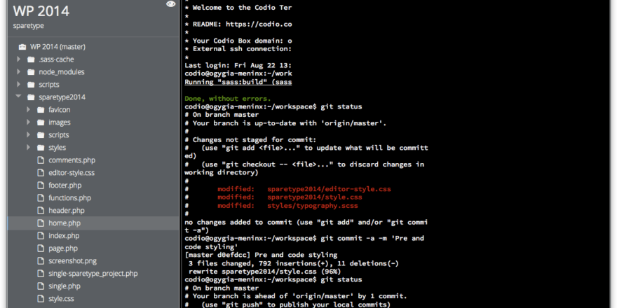 SpareType Codio Screenshot, coding, terminal, git, scss, css